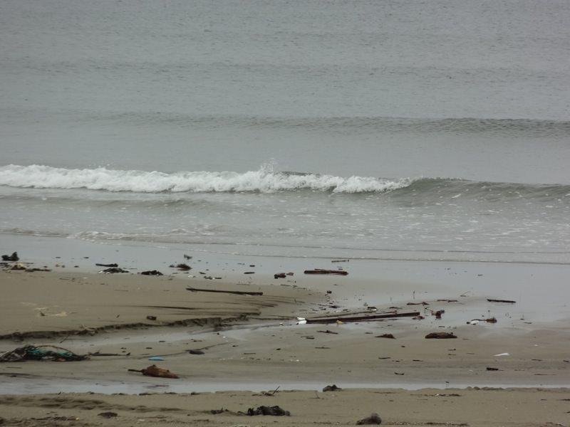 寂しげな波