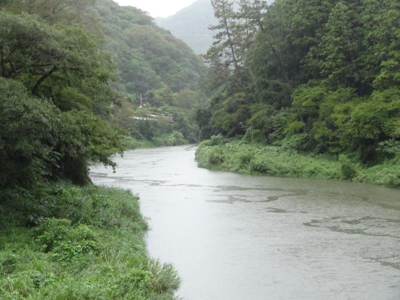 橋の真ん中から撮った川の景色