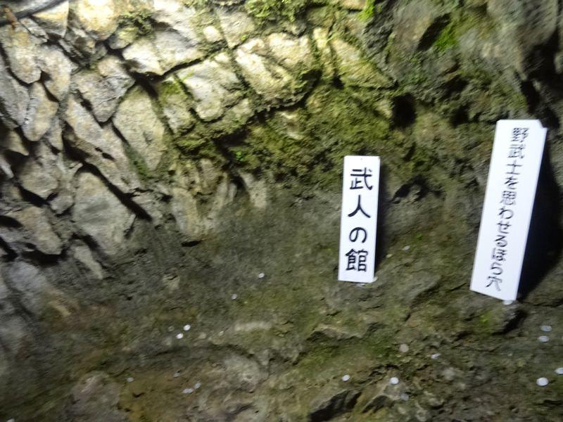 井倉洞 武人の館