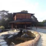 岡山の後楽園は12月でも素晴らしい!写真と動画での感想レポート