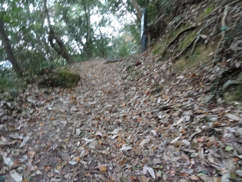 松山城へ向かう道