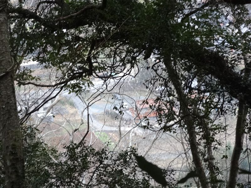 松山城の登山道から見た町の景色