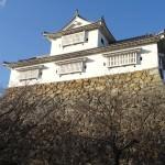 白いお城「津山城(鶴山公園)」散策記 2013年12月