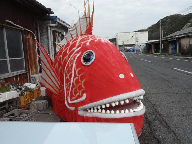 大きな赤い魚