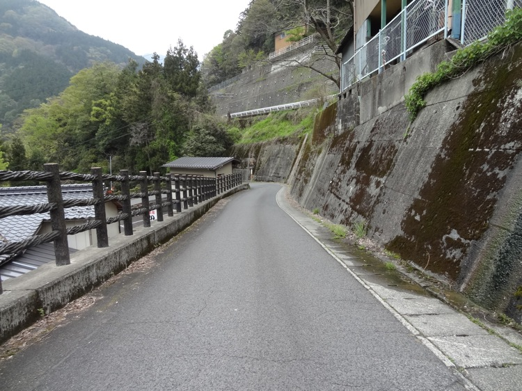 かずら橋への道
