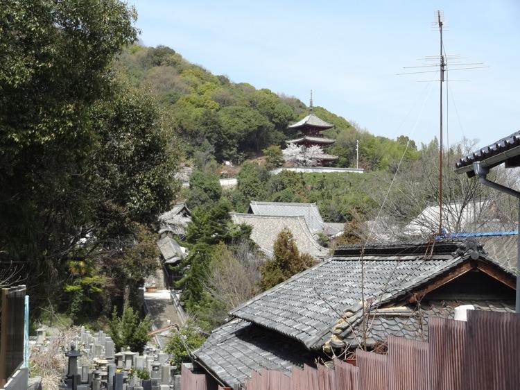 尾道の西国寺が遠くに見える