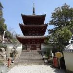 尾道の西国寺(さいこくじ)は桜との相性抜群で癒される場所だった