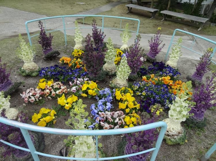 松寿寺で育てられている花