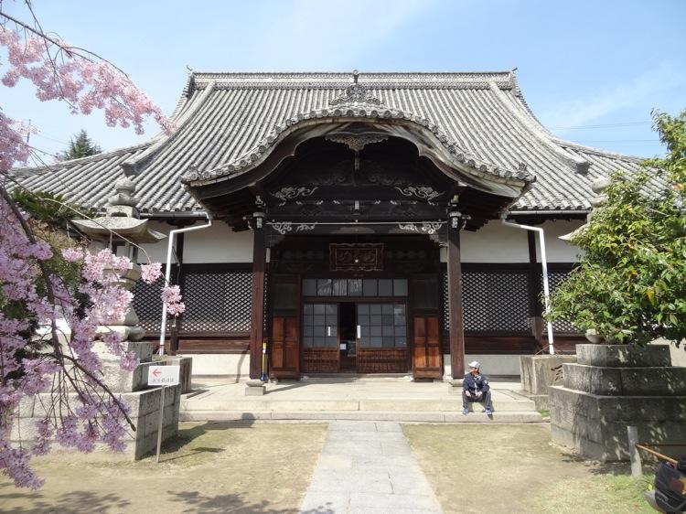 尾道 天寧寺と桜