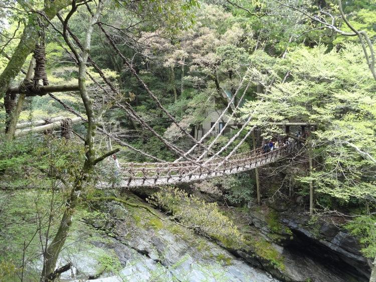 遠くから見る祖谷のかずら橋