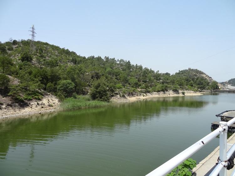 直島の工場地帯近くの池