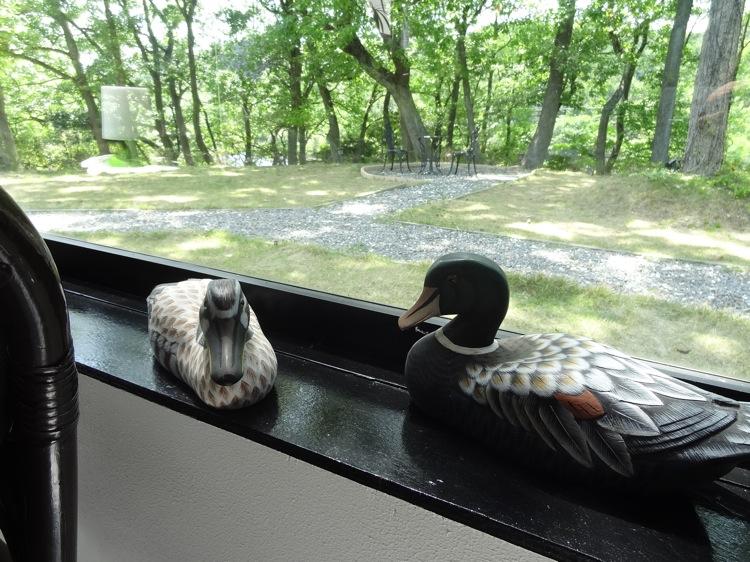 いっぷく茶屋から見る外の景色が素晴らしい