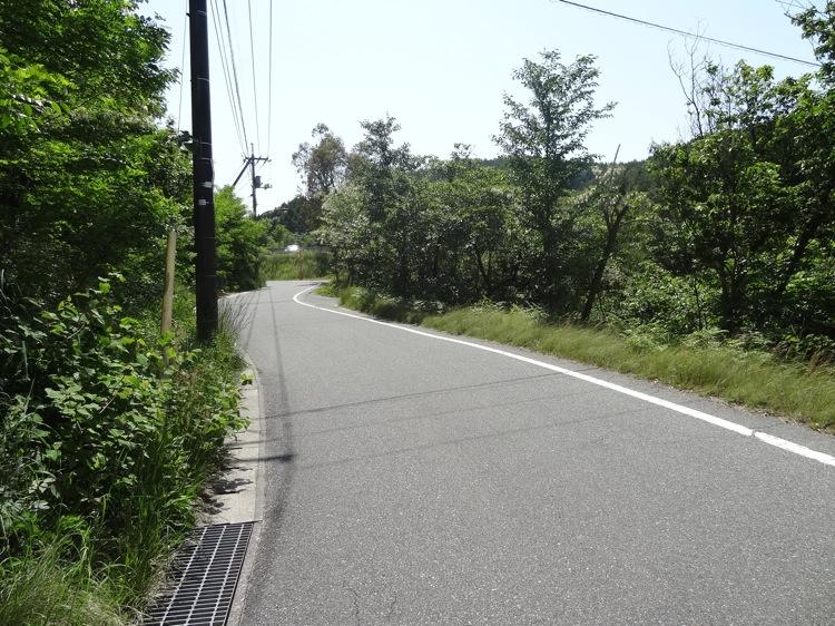 直島の地中美術館への道