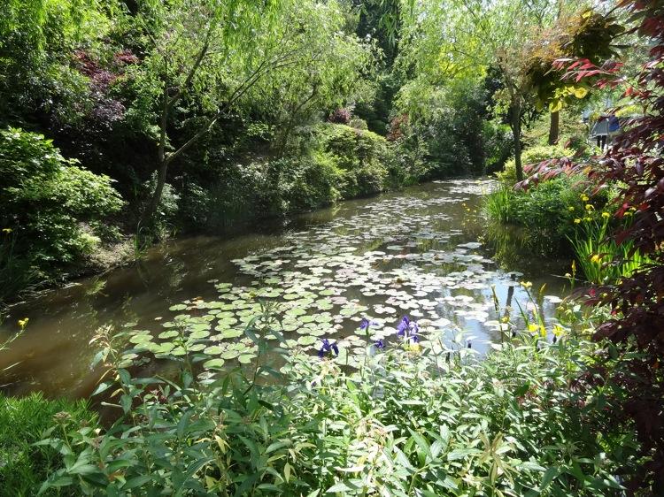 地中美術館までの道にある小さな池