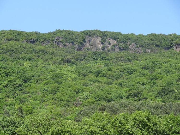 屋島の山の景色