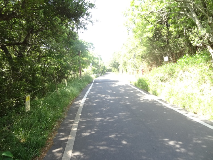屋島の山道