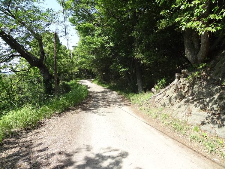 長崎の鼻への道