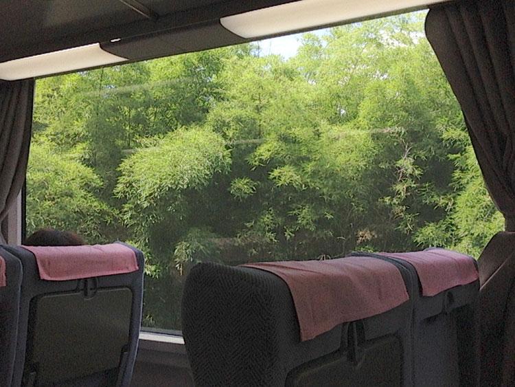 南海電車から見る景色