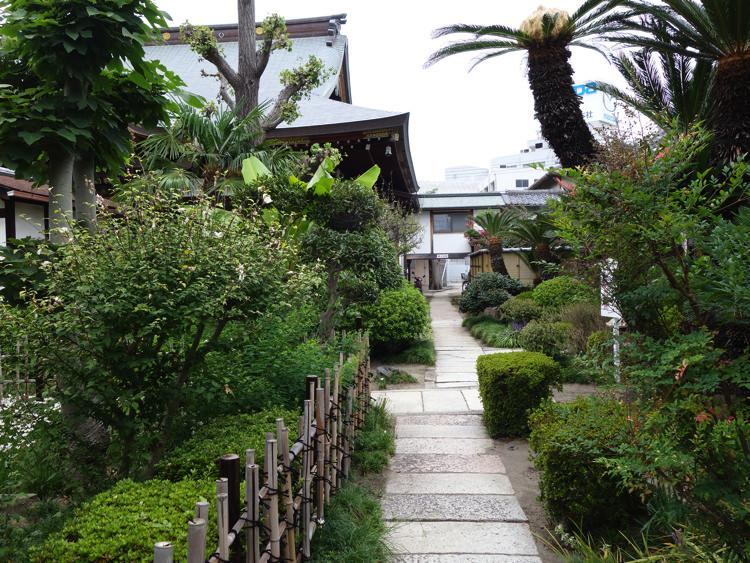 兵庫大仏横の庭園