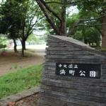 東京の中心にあるオアシス「浜町公園」が癒される