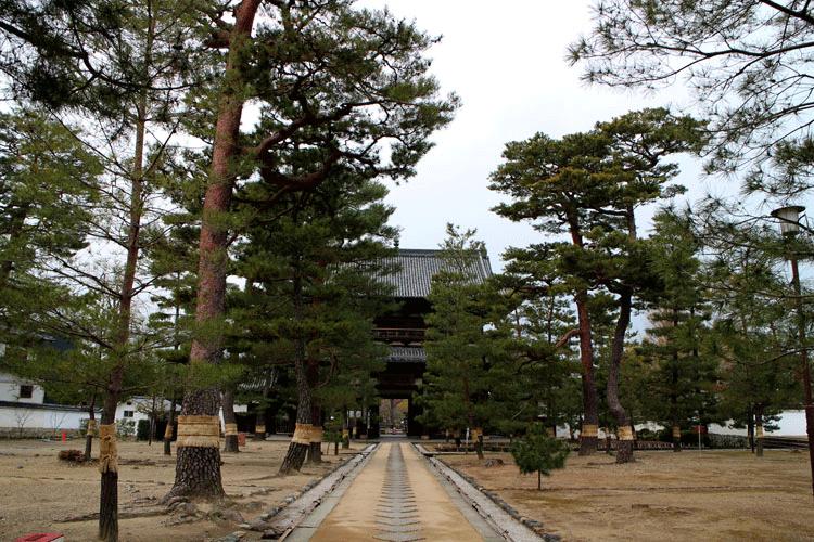 萬福寺 広い道