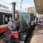 松山の路面電車に可愛らしい「坊っちゃん列車」があるよ