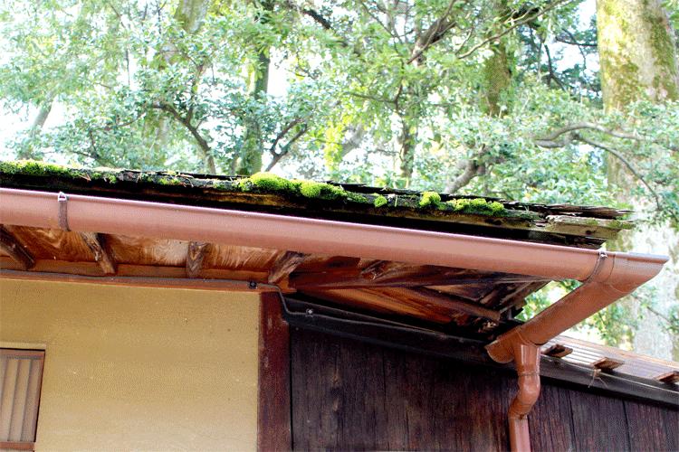 兼六園 お茶屋の屋根