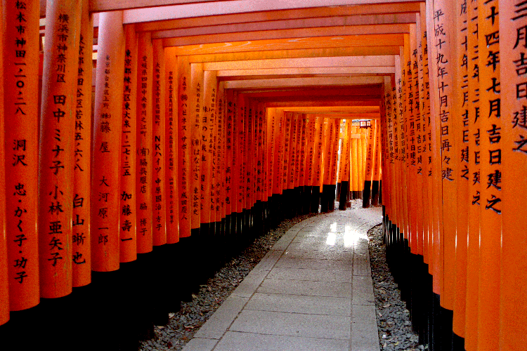 伏見稲荷神社 裏側