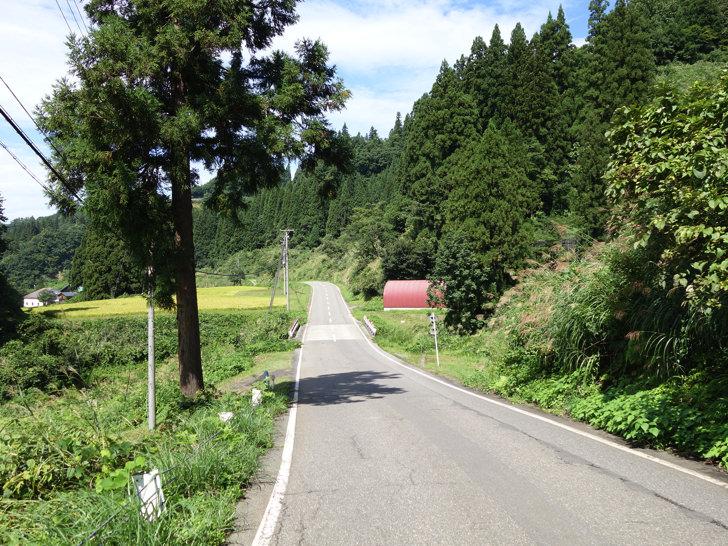 美佐島駅からギルドハウス十日町までの道