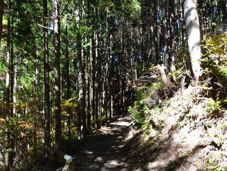天川村 みたらい渓谷