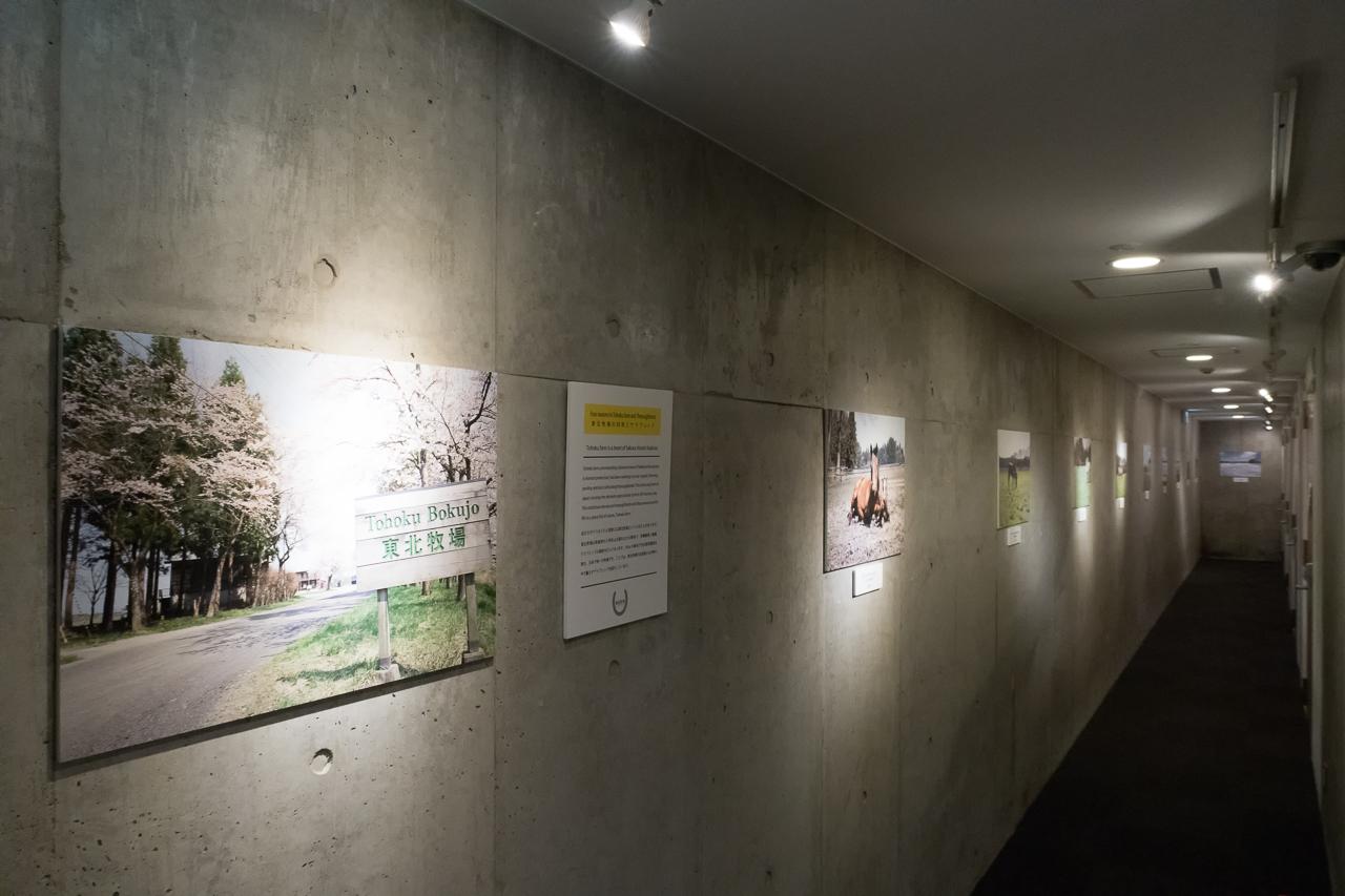サクラホステル浅草の地下廊下ギャラリー