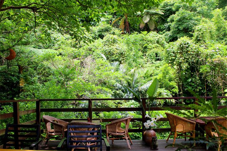 カフェイチャラ やんばるの森の中のカフェ