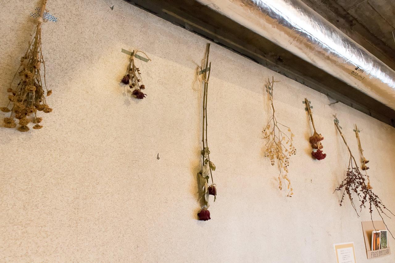 IRORI壁のドライフラワー