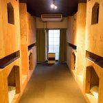 【札幌】すすきの駅から徒歩約10分。「SOCIAL HOSTEL 365(ソーシャル ホステル 365)」宿泊体験記